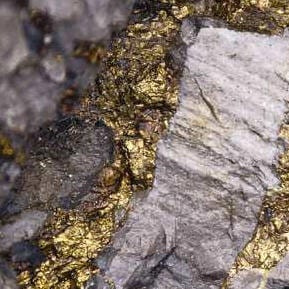 Papillon Resources' Fekola PFS results point to project viability