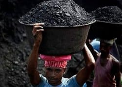 Hundreds of coal licences cancelled by Supreme Court – India