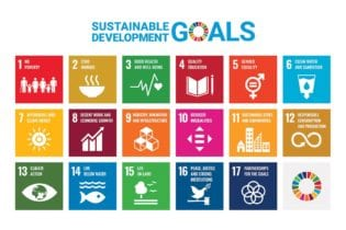 Gold Tailings Retreatment & UN SDGs
